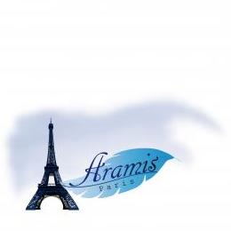 Aramis: Taxi & Sightseeing in Paris & France